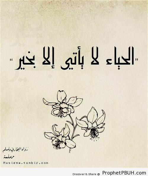 Modesty (Prophet Muhammad ï·º Quote) - Drawings