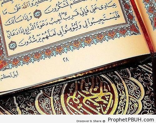Mushaf Photo Showing Quran 2-186 - Mushaf Photos (Books of Quran)