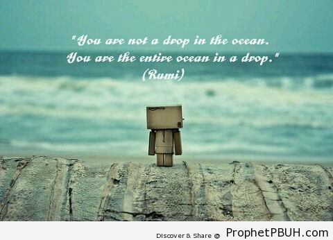 Ocean in a Drop - Islamic Quotes