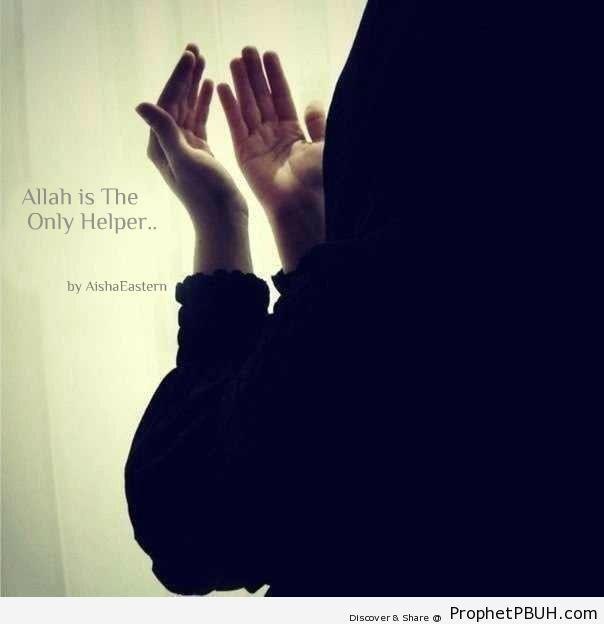 Only Helper - Muslimah Photos (Girls and Women & Hijab Photos)