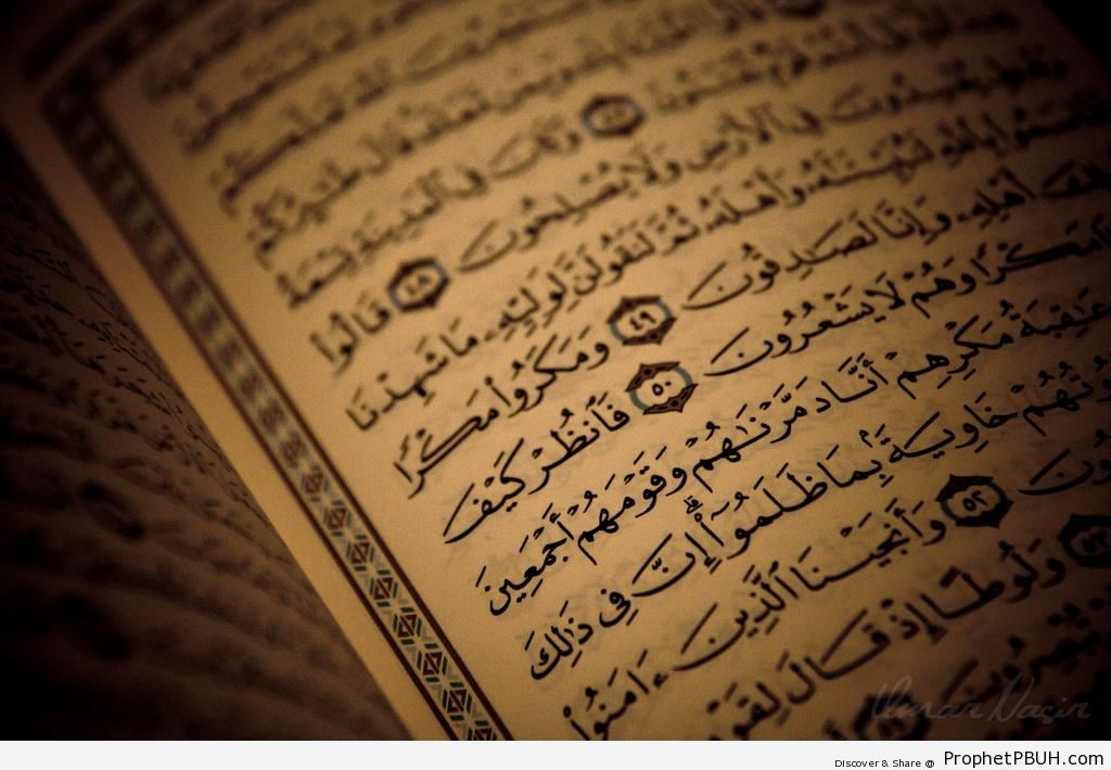 Open Mushaf on Surat an-Naml (Quran Chapter 27) - Mushaf Photos (Books of Quran)