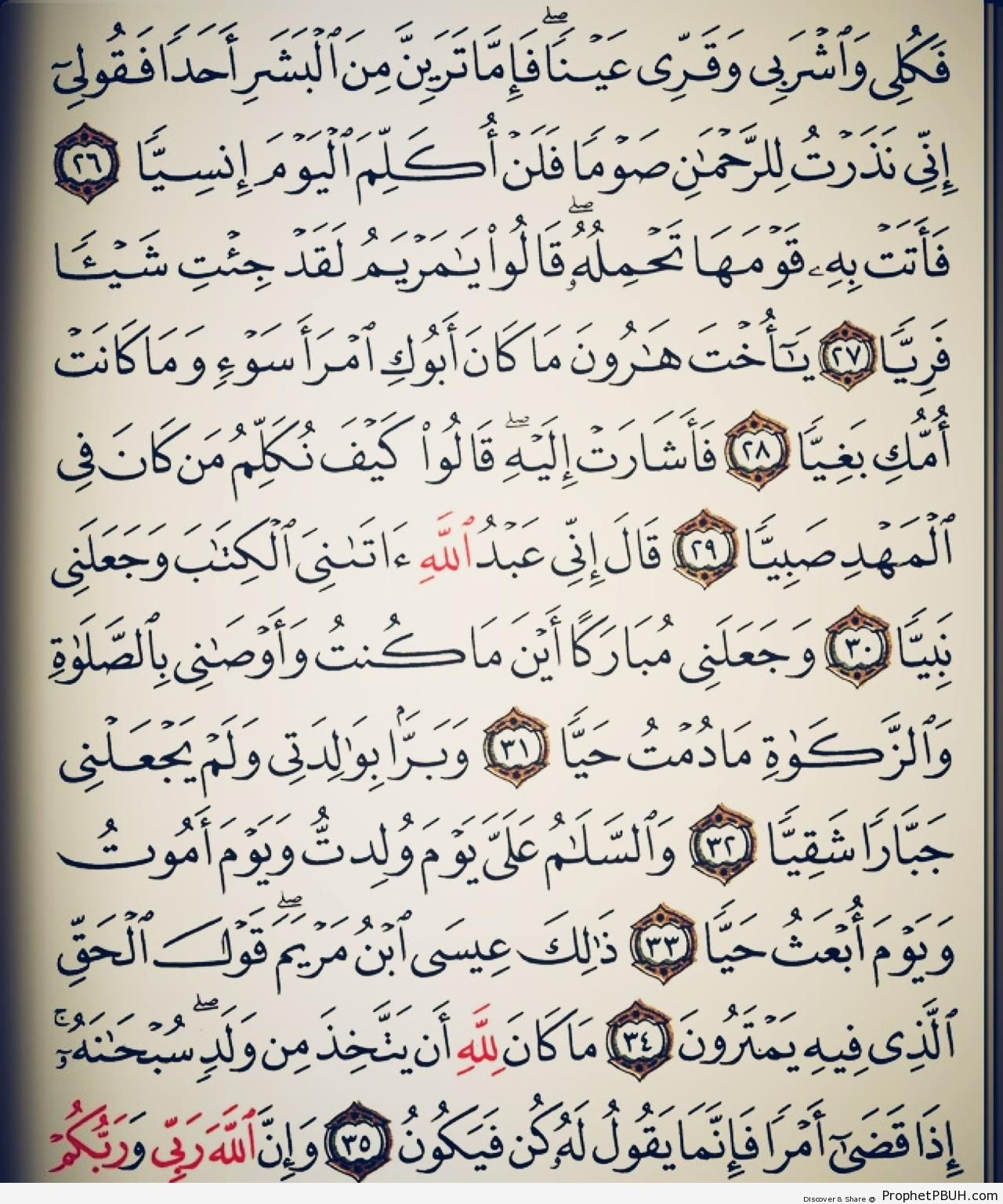 Page from Surat Maryam (Mary) - Islamic Quotes