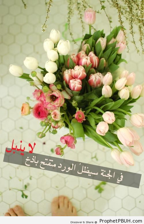 Paradise Flowers - Islamic Quotes