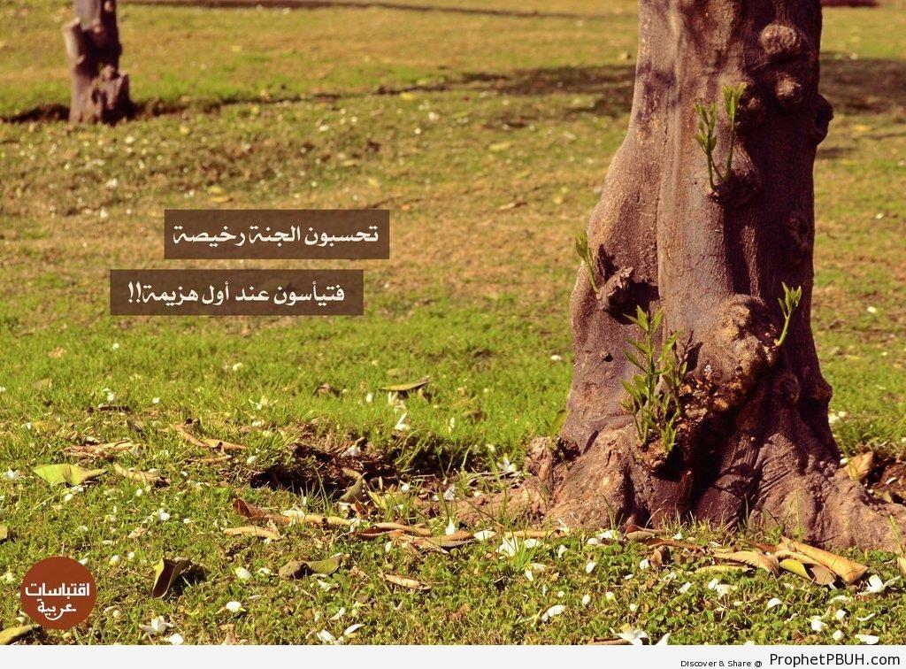 Paradise - Islamic Quotes