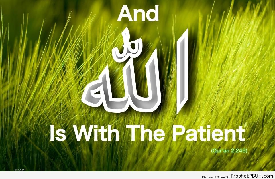 Patience (Quran 2-249 - Surat al-Baqarah) - Islamic Quotes