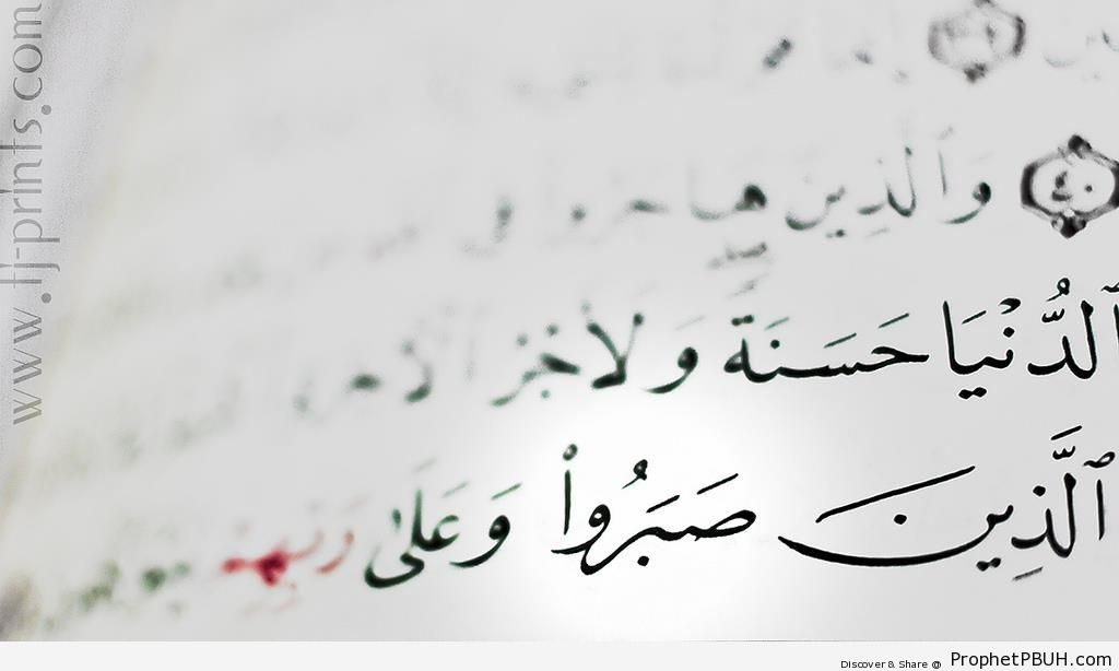 Patience (Shot of Page from Surat an-Nahl) - Quran 16-42