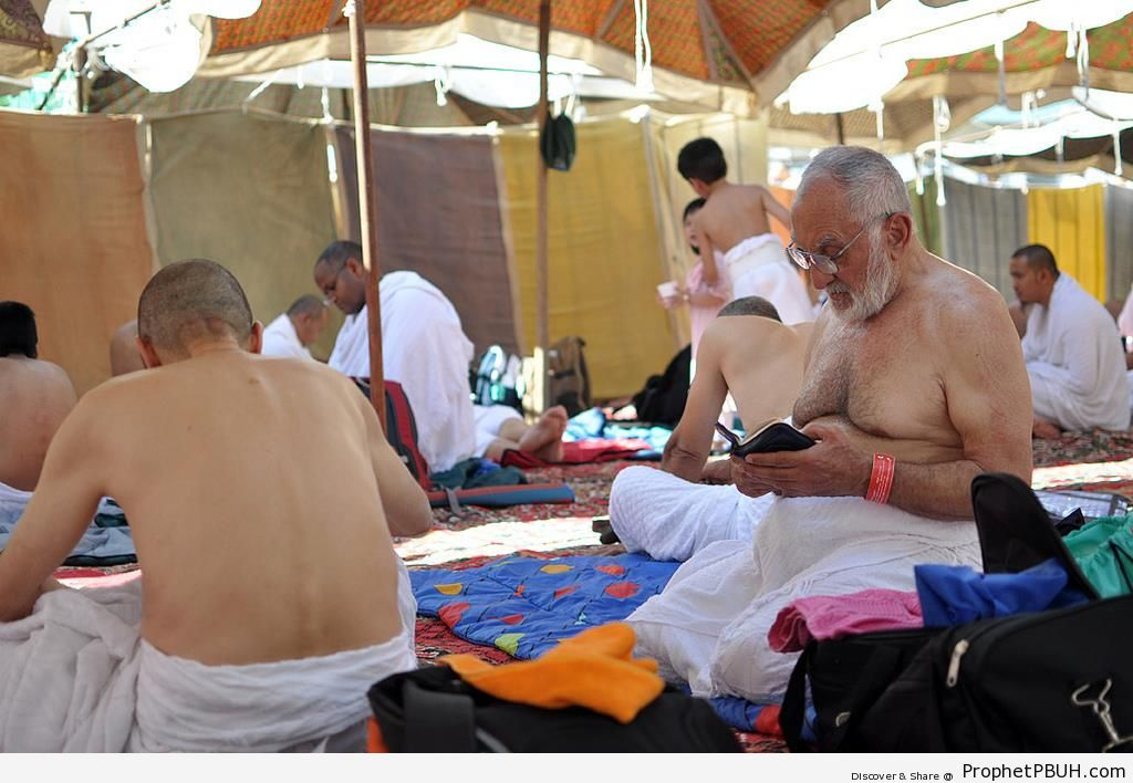 Pilgrims Reading Quran Under Mount Arafat Tents - Photos of Haj Proceedings