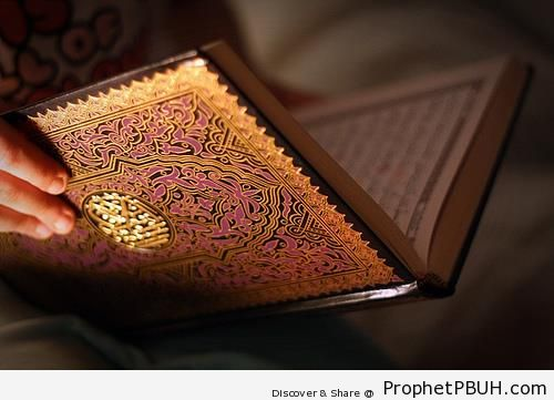 Pretty Book of Quran - Mushaf Photos (Books of Quran)