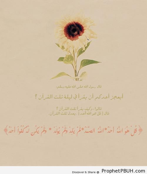 Prophet Muhammad ï·º on the Importance of Surat al-Ikhlas (Quran 112) - Drawings of Flowers