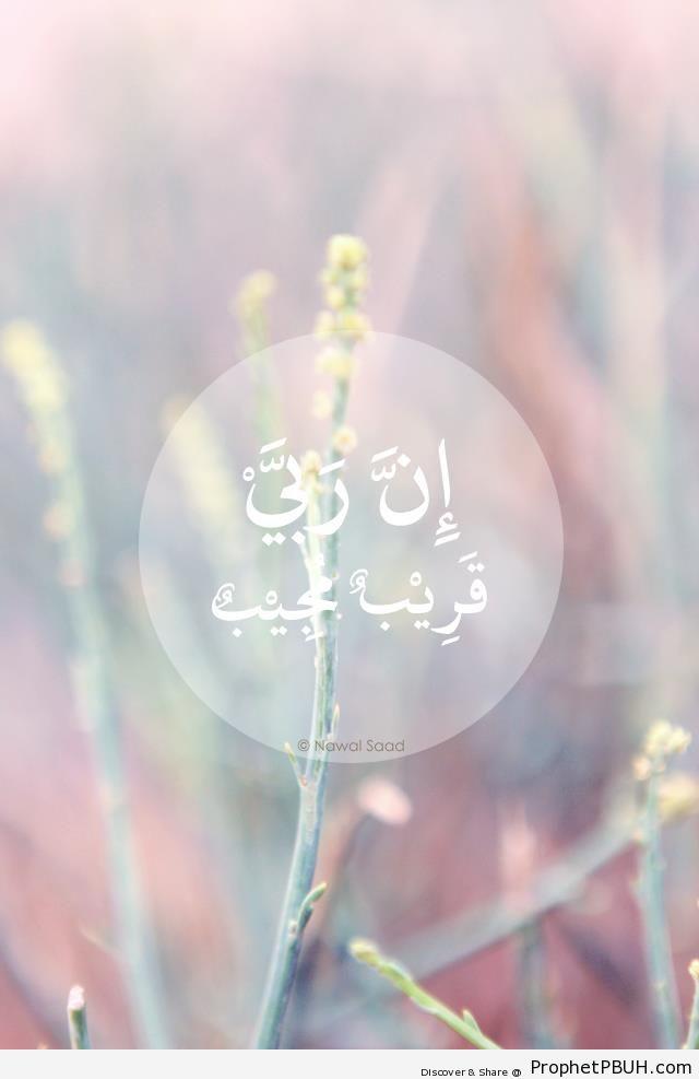 Quran 11-61 - Quranic Verses