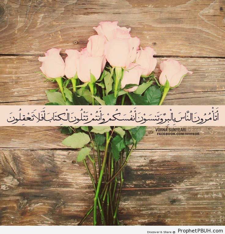 Quran 2-44 - Photos
