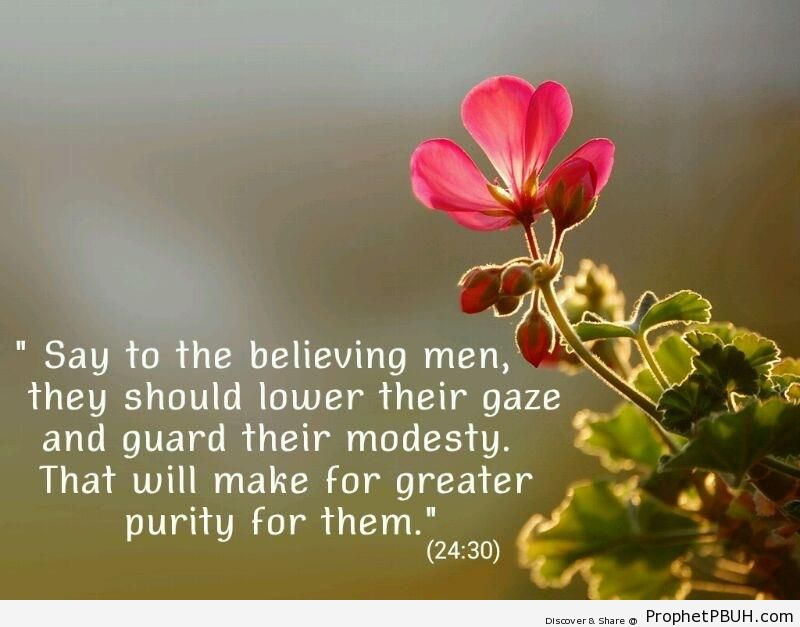 Quran 24-30 - Islamic Quotes About Modesty and Lowering the Gaze