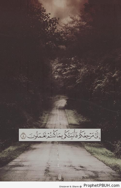 Quran 29-8 - It is to Me that you all must return& - Islamic Quotes