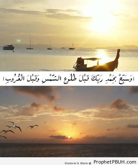 Quran 50-39 (Glorify Your Lord Before Sunrise and Before Sunset) - Photos