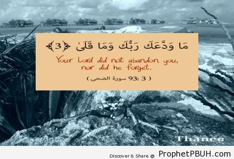Quran 93-3 - Quran 93-3 -002