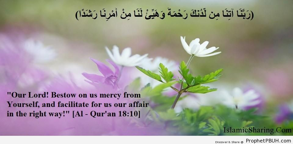Quran Chapter 18 Verse 10