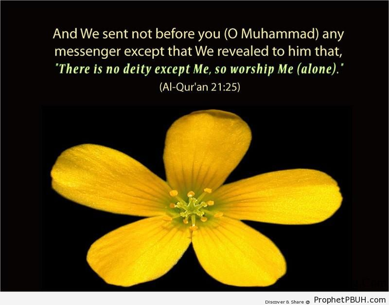 Quran Chapter 21 Verse 25