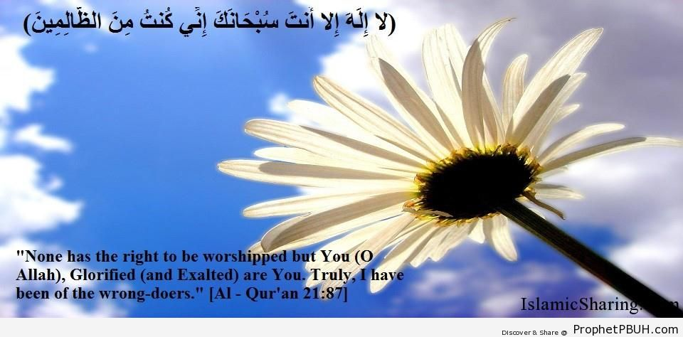 Quran Chapter 21 Verse 87