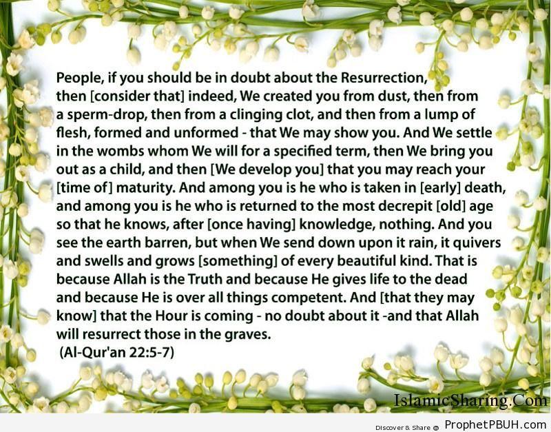 Quran Chapter 22 Verse 5 7