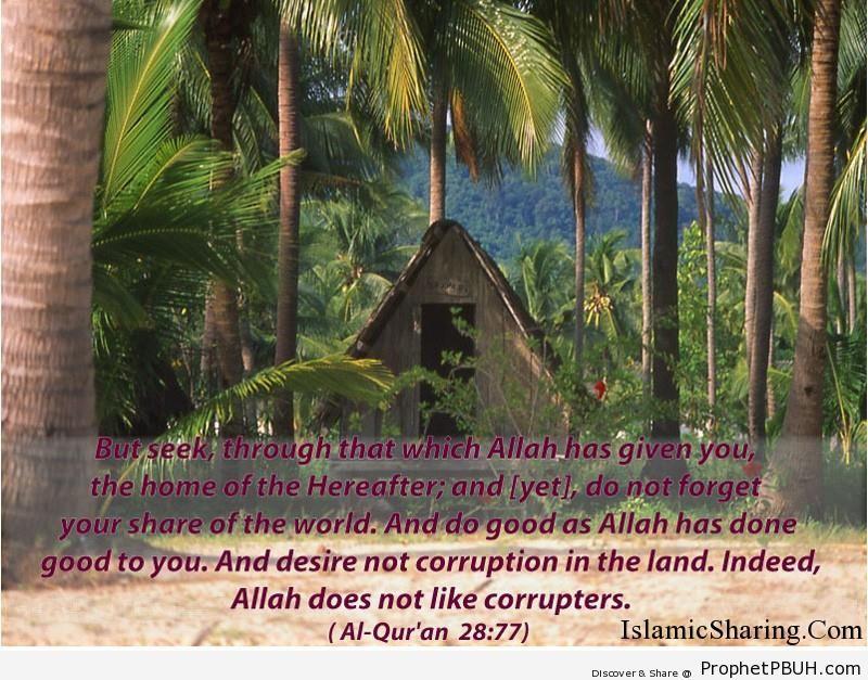 Quran Chapter 28 Verse 77