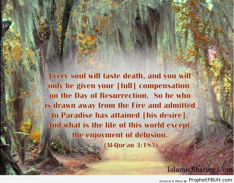 Quran Chapter 3 Verse 185