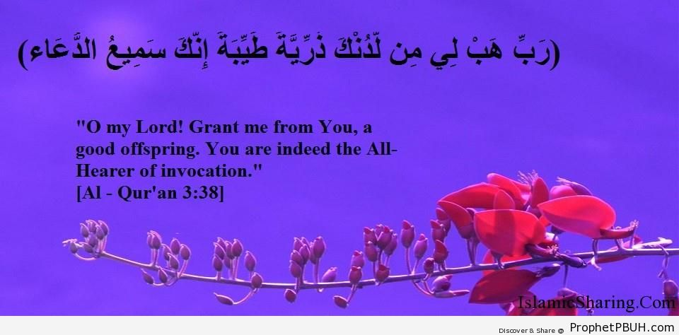 Quran Chapter 3 Verse 38