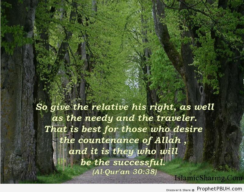 Quran Chapter 30 Verse 38