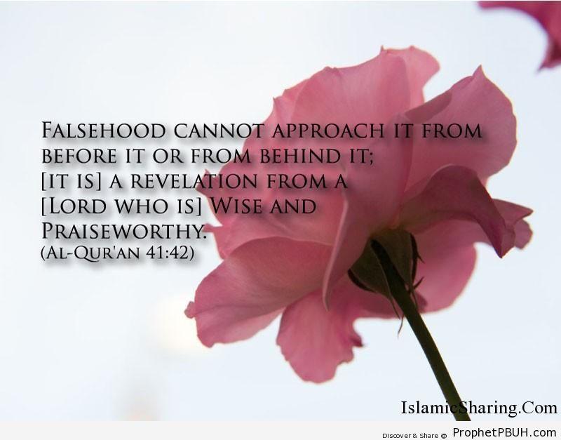 Quran Chapter 41 Verse 42