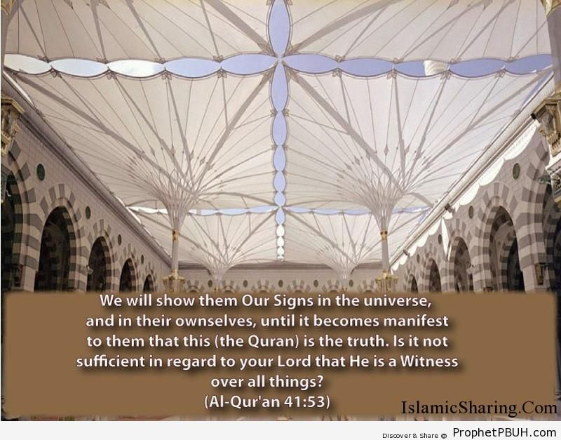 Quran Chapter 41 Verse 53