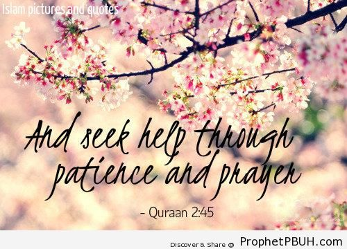 Quran Quote On Patience Islamic Quotes Prophet Pbuh Peace Be
