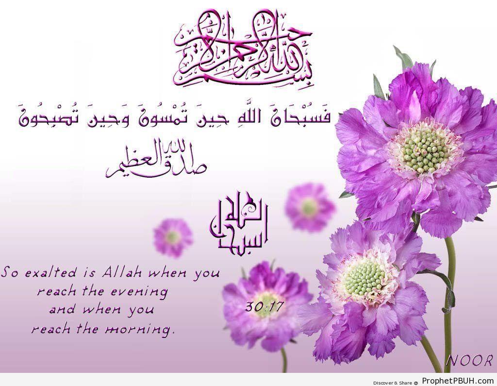 Quranic Verses (7)