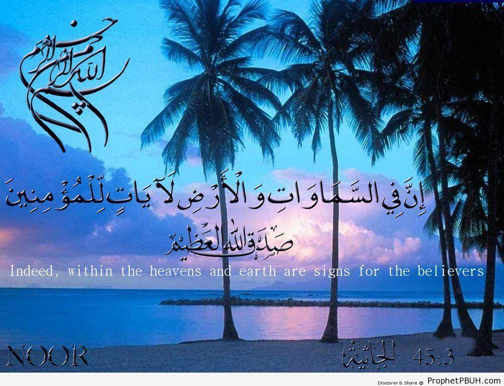 Quranic Verses (8)