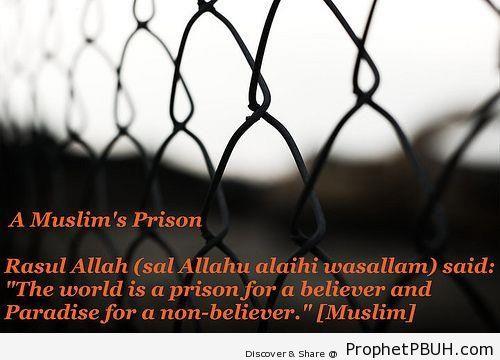 Sayings of the Prophet pbuh (5)