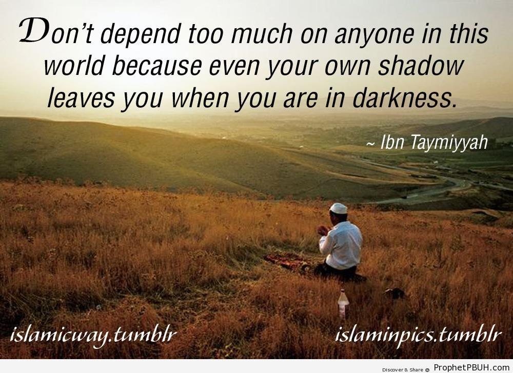 Shadow - Ibn Taymiyyah Quotes