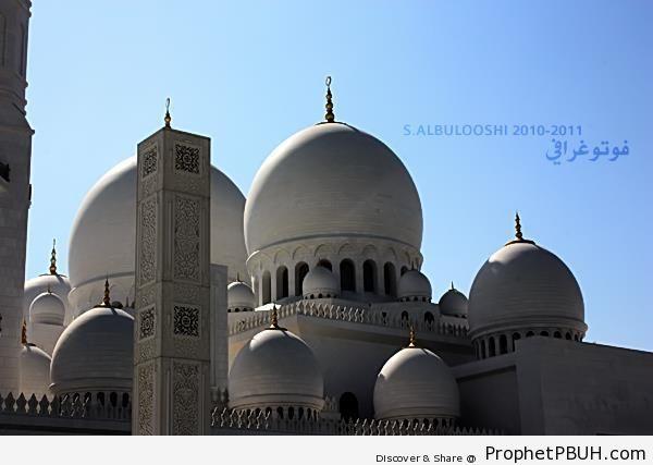 Sheikh Zayed Grand Mosque in Abu Dhabi, United Arab Emirates - Abu Dhabi, United Arab Emirates -007