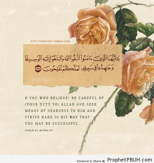 Success (Quran 5-35) - Islamic Quotes