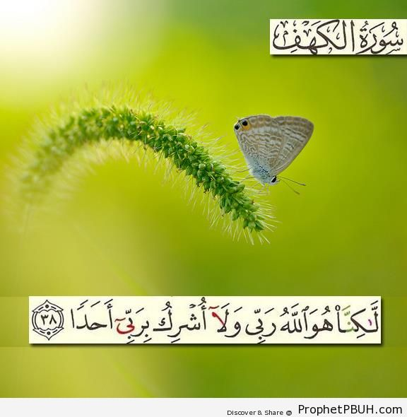 Surat al-Kahf 18-38 - Photos