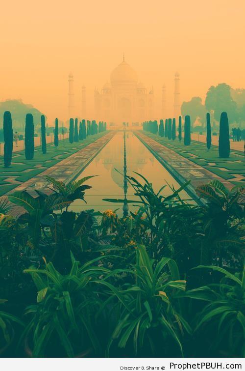 Taj Mahal - Agra, India -002