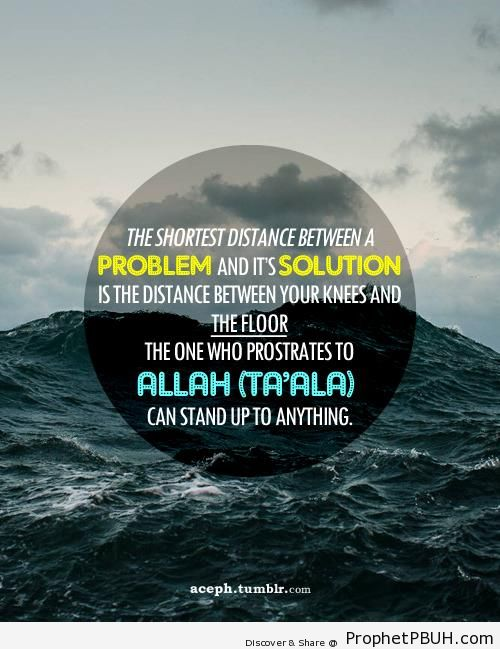 The Distance Between Your Knees and the Floor - Islamic Quotes About Tawakkul (Complete Reliance Upon Allah)