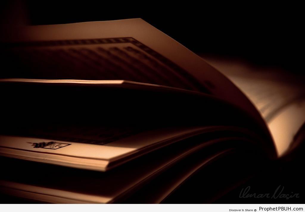 The Light in the Dark (Mushaf Photo) - Mushaf Photos (Books of Quran)