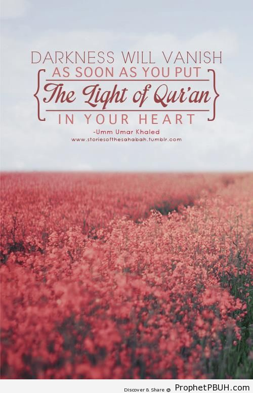 The Light of Quran - Islamic Quotes