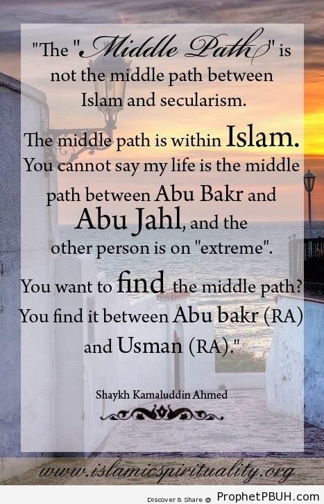 The Middle Path (Shaykh Kamaluddin Ahmed Quote) - Shaykh Kamaluddin Ahmed Quotes