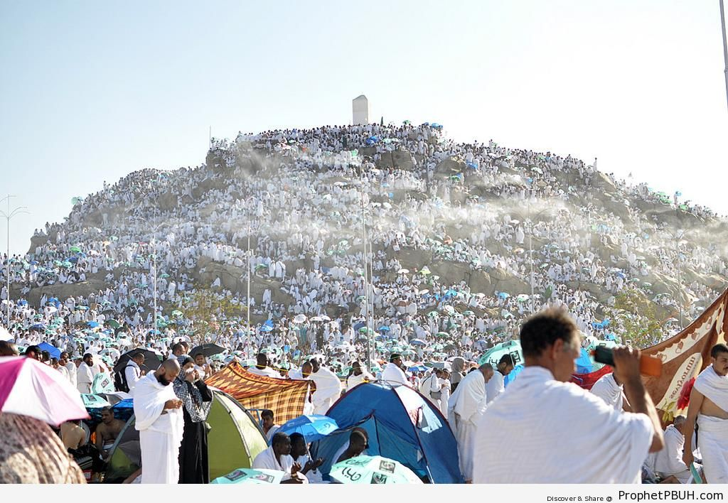 The Peak of Mount Arafat (Mount of Mercy) - Photos of Haj Proceedings -