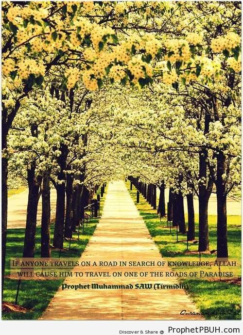 The Roads of Paradise - Hadith
