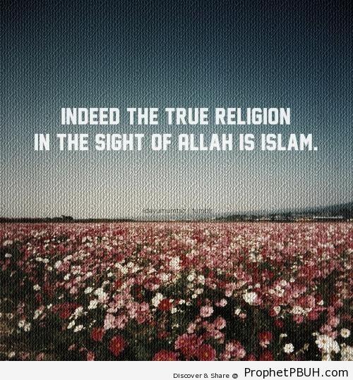 The True Religion - Photos