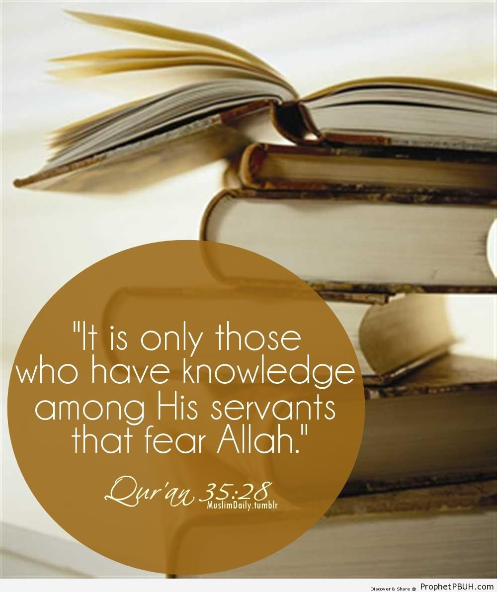 Those Who Have Knowledge - Islamic Quotes