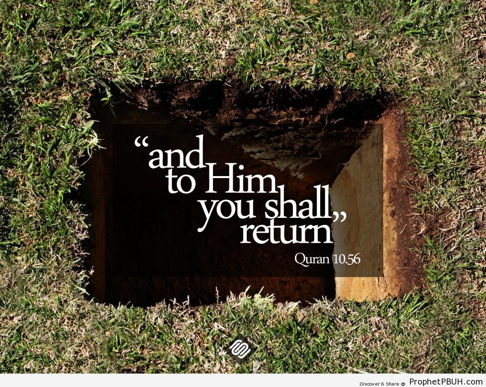To Him You Shall Return (Quran 10-56) - Islamic Quotes