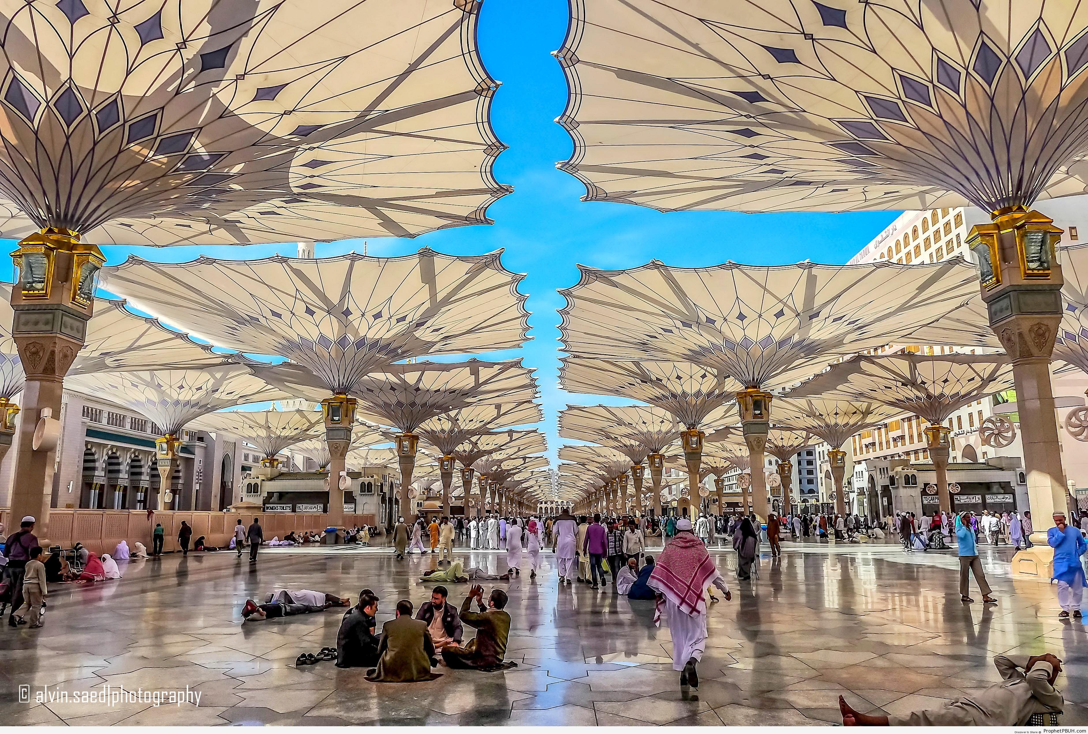 Umbrellas at al-Masjid an-Nabawi in Madinah, Saudi Arabia - Al-Masjid an-Nabawi (The Prophets Mosque) in Madinah, Saudi Arabia -Picture