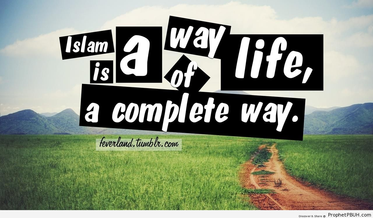 the way of life for the The following is excerpted from bible times and ancient kingdoms, which is available from way of life literature each section of the book is illustrated by a powerpoint presentation each section of the book is illustrated by a powerpoint presentation.