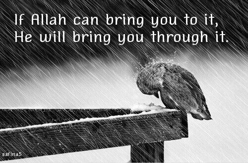islamic quote, allah, life, text, faith, quotes, safina5, quote, islam, الله, rain